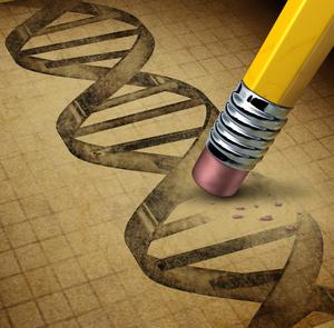 유전자 편집 기술로 인해 DNA 코드가 영구적으로 변경됩니다.
